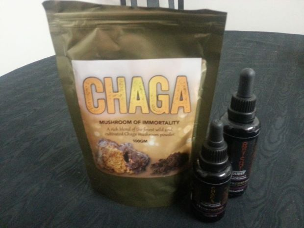 Chaga: king of the medicinal mushrooms and Reishi: the queen.